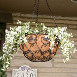 Scroll & Ivy Hanging Basket