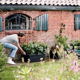 Movable Garden