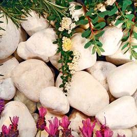 Coral White Pebbles Bulk