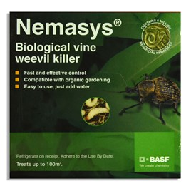 Nematode Nemasys Vine Weevil 100M² (Spring and Autumn)