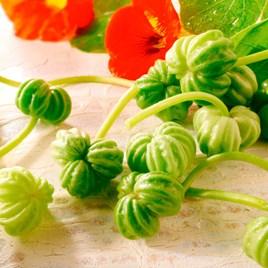 Nasturtium Leaves Seeds