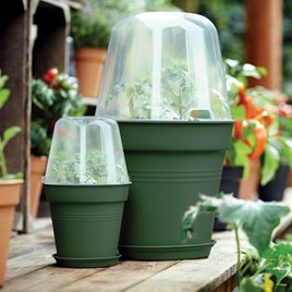 Leaf Green Grow Pot + Bell Cover + Saucer