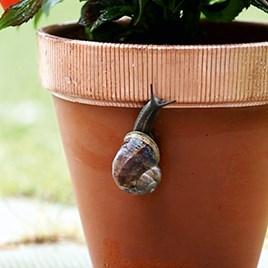 No More Slugs 'n' Snails - Flexi Copper Tape