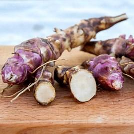 Jerusalem Artichoke Papas (6) Gourmet roots