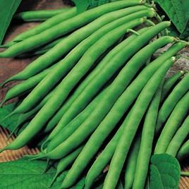 Bean (Climbing French) Seeds - Cobra