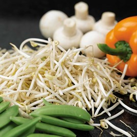 Beansprouts (Mung Bean) Seeds
