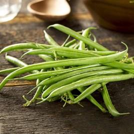 Bean (Dried Dwarf) Seeds - Cannellino