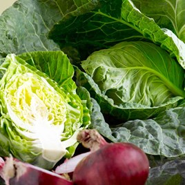 Cabbage Seeds - Wheelers Imperial