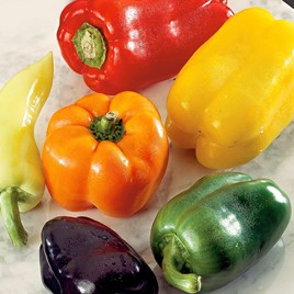 Pepper Sweet Seeds - Rainbow Mix