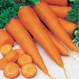 Carrot Seeds - St. Valery