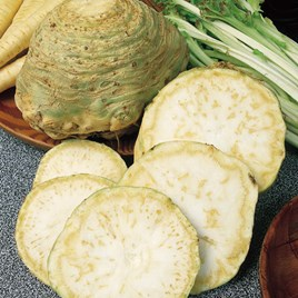 Celeriac Seeds - Monarch