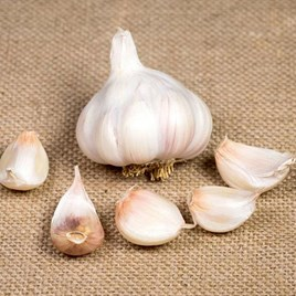 Garlic Bulbs Picardy Wight 250gm