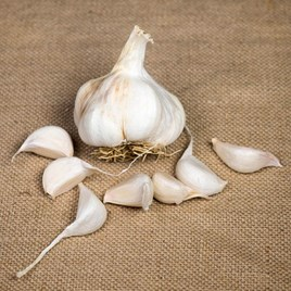 Garlic Bulbs Maddock Wight 250gm