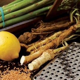 Horseradish Thongs (Roots) 5 Thongs