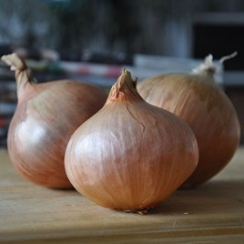 Onion Sets - Pink Panther (.25Kg)