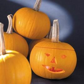 Pumpkin Seeds - F1 Becky