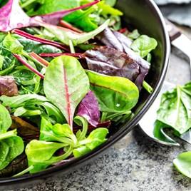 Bistro Salad Mixed (20)
