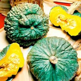 Squash Seeds - Marina di Chioggia