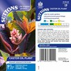 Castor Oil Plant Seed