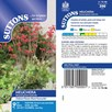 Heuchera Seeds - Bressingham Hybrids