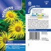 Inula Seeds - Grandiflora