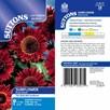 Sunflower Seeds - Ruby Sunset