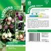 Aubergine Seed - Patio Mix