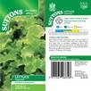 Lettuce Seeds - Salad Bowl