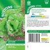 Lettuce Seeds - Rossa Di Trento