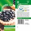 Wild Blueberry Seeds