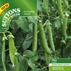 Pea Seeds - Vivado