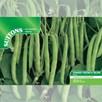 Bean (Dwarf French) Seeds - Sprite