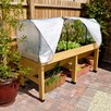 VegTrug Home Farm Kit - 1.8m with Frame and Cover