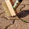Telescopic Wire Block Paving Brush / Path, Patio & Decking Cleaner Concentrate
