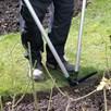 Kew Lawn Edging Shears