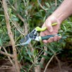 Kew Ergo Twist Bypass Secateurs