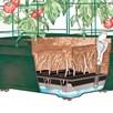 Tomato Growing Garden Success Kit